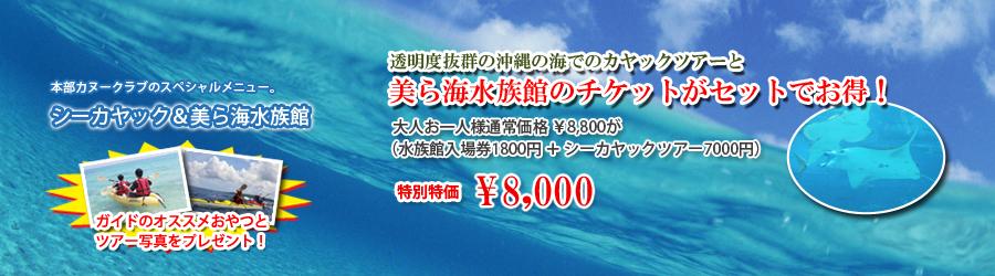 スペシャルメニュー:シーカヤック&美ら海水族館満喫