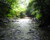 ター滝トレッキングツアー2